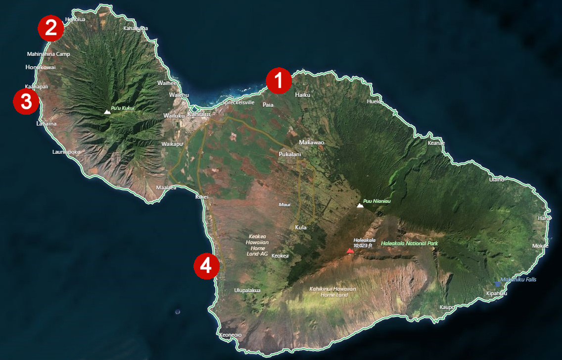maui turtle map: best places to see the sea turtles | best things to